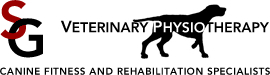 Veterinary Physiotherapy – Canine Fitness and Rehabilitation Specialists